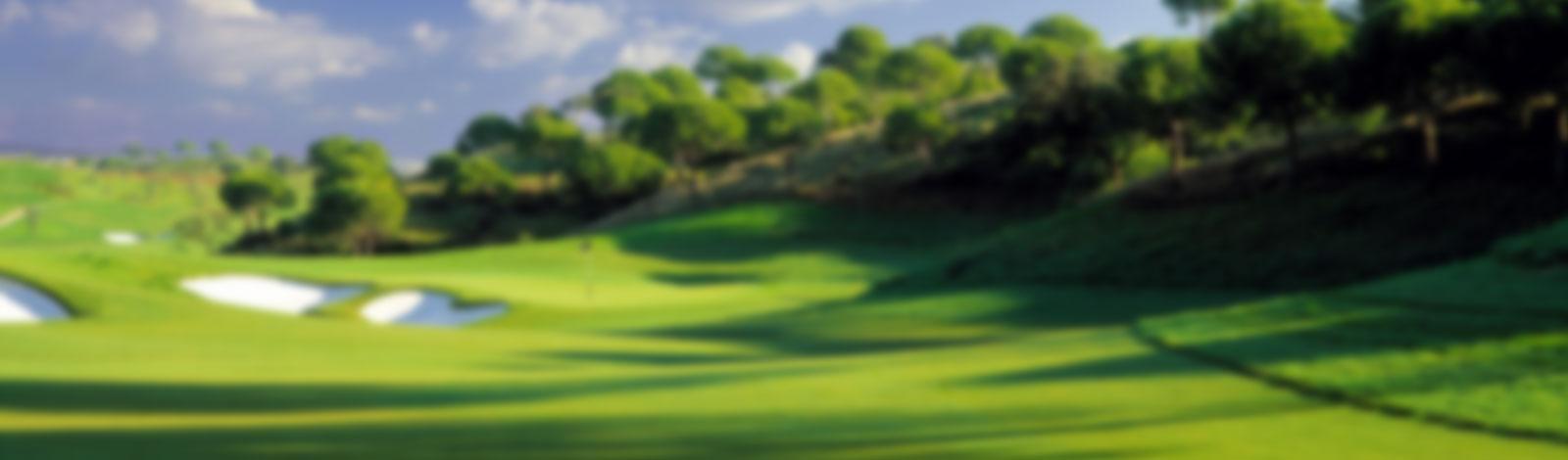 golf-back